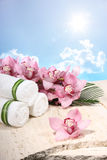 Orchid and Towel in Spa Display Stock Images