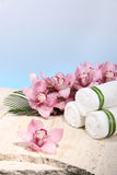Orchid and Towel in Spa Display Royalty Free Stock Image