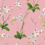 Orchid Tropical Leaves and Flowers Background. Seamless Pattern Stock Photo
