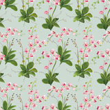 Orchid Tropical Leaves and Flowers Background. Seamless Pattern Royalty Free Stock Images
