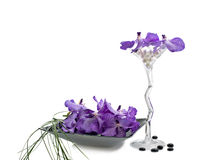 Orchid vanda flowers with wineglass Stock Image