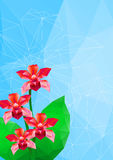 Orchid, vector illustration, polygonal style Royalty Free Stock Photography