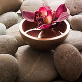 Ayurveda symbol. Orchid in water for ayurveda ambiance royalty free stock images