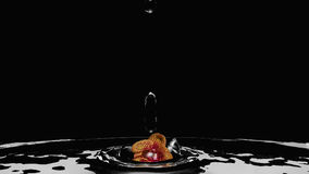 Orchid in the water. Orchid sinks into the water. 3d illustration on black background royalty free illustration