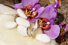 Orchid and wedding rings Stock Photos