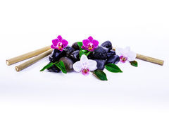 Orchid Wellness. Wellness Background with Orchid and Stones Stock Photo