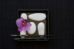 Orchid and white pebble Royalty Free Stock Images