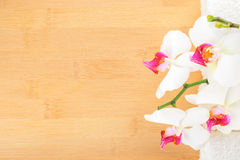 orchid and white towels on bamboo wooden  background Stock Image