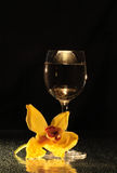 Orchid and wine Royalty Free Stock Photography