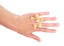 Orchid on woman hand Stock Images