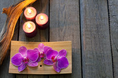 Orchid on wooden boards spa cosmetic abstract  background Royalty Free Stock Image