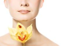 orchid yello γυναικών στοκ εικόνα με δικαίωμα ελεύθερης χρήσης