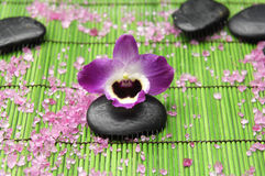 Orchid with zen ston Royalty Free Stock Images
