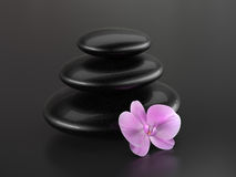 Orchid and zen stones Royalty Free Stock Images