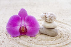 Orchid with zen stones Royalty Free Stock Image