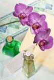 Orchidée dans la salle de bains Photographie stock libre de droits