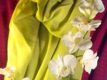 Orchidea bianca Fotografie Stock Libere da Diritti