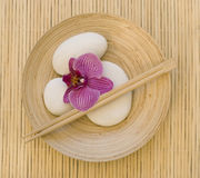 Orchidea e ciottolo bianco Fotografia Stock Libera da Diritti