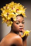 Orchidea gialla Immagine Stock Libera da Diritti