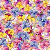Orchidea kwiaty, akwarela Zdjęcie Stock
