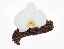 Orchidea na czarny kawie Obrazy Stock