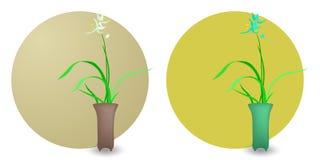 Orchidea orientale di stile fotografia stock