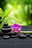 Orchidea porpora con le pietre del nero della torre, bambù sulla stuoia nera Fotografia Stock Libera da Diritti