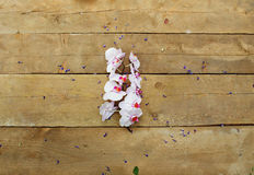 Orchidea rosa su un fondo di legno fotografia stock libera da diritti