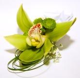 Orchidea su priorità bassa bianca Immagini Stock