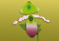 Orchidea verde Fotografia Stock