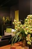 Orchideeën in binnenland Royalty-vrije Stock Afbeelding