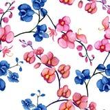 Orchideeënpatroon Stock Afbeeldingen