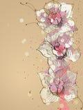Orchidee Vector Illustratie