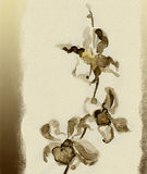 Orchidee. Aquarell stock abbildung