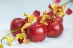 Orchidee auf Äpfeln lizenzfreies stockbild