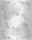 Orchidee bianche del raso dell'invito di cerimonia nuziale   Immagini Stock
