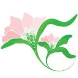 Orchidee-Blumen-Zeichen Stockfotografie