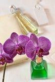 Orchidee in de badkamers Royalty-vrije Stock Afbeeldingen