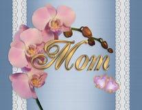 Orchidee di colore rosa della scheda di giorno di madri Immagini Stock Libere da Diritti