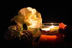 Orchidee door elegante kaars wordt verlicht die