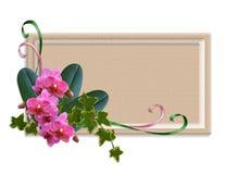 Orchidee e scheda o contrassegno dell'edera Immagine Stock