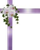 Orchidee ed edera del bordo di Pasqua o di cerimonia nuziale Fotografia Stock Libera da Diritti