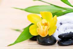 Orchidee en handdoek royalty-vrije stock fotografie