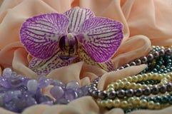 Orchidee en juwelen stock fotografie