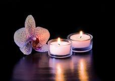 Orchidee en Kaarsen stock afbeelding