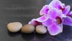 Orchidee met massagestenen, kuuroord die met waterdalingen plaatsen op orch stock afbeeldingen