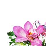 Orchidee mit Chrysanthemen Lizenzfreie Stockbilder