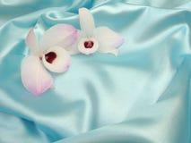 Orchidee op blauw satijn - 2 royalty-vrije stock foto's