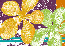 Orchidee-Tapete Lizenzfreie Stockbilder