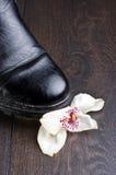 Orchideebloem met zwarte schoen wordt verpletterd die Stock Afbeelding
